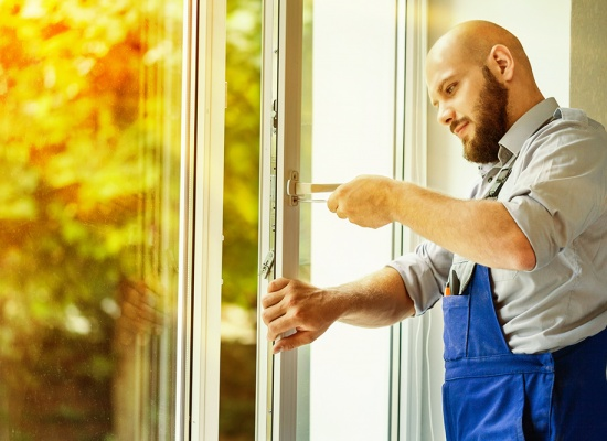 Professionnel fenêtres