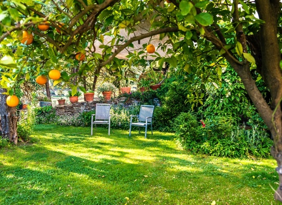 Aménagement du jardin - prix
